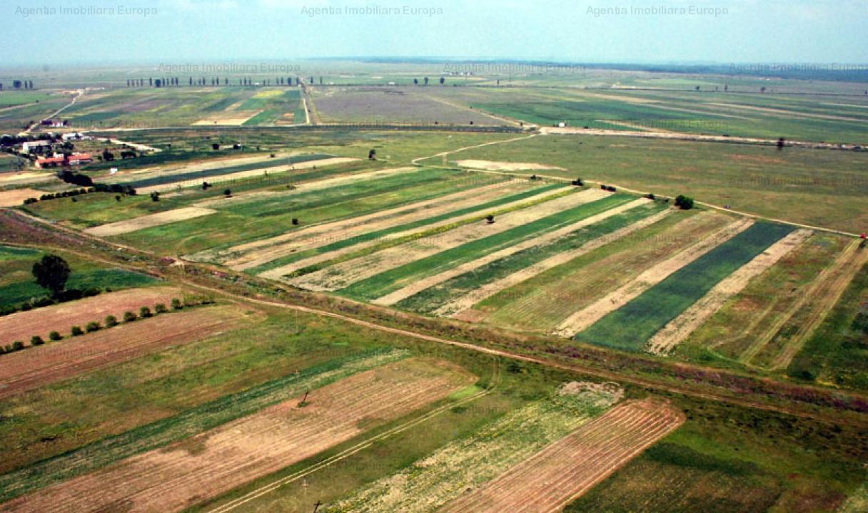 Ferma agricola de vanzare 330 hectare