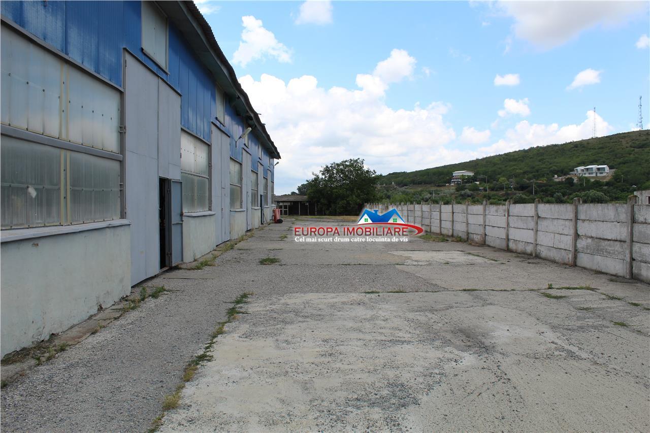 Hala si teren de vanzare in zona industriala